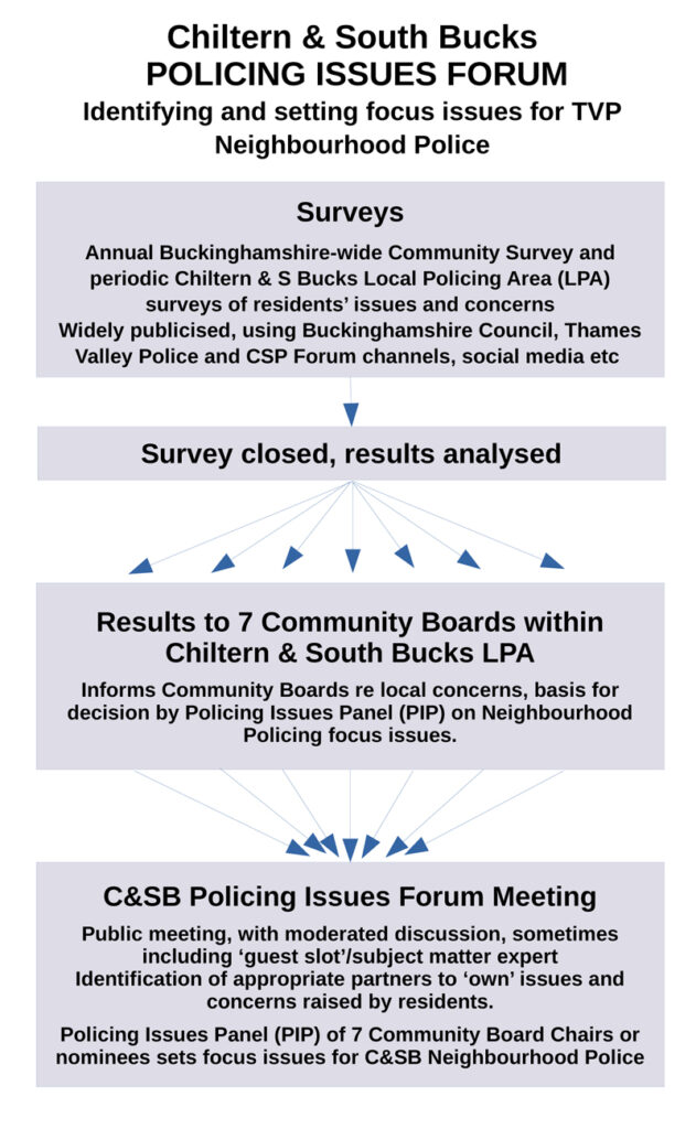 flow chart depicting process of neighbourhood policing issues setting