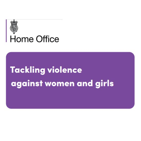 Violence Against Women and Girls (VAWG) Call for Evidence