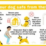 safety advice to protect from dog theft
